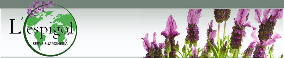 Jardineria sant cugat top client jardineria manel for Jardineria la noguera