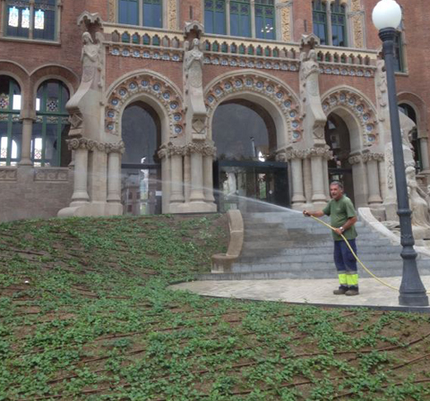 Ajardinamiento hospital sant pau de barcelona jardiner a for Jardineria moral barcelona