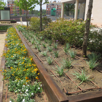 Ajardinamiento y mantenimiento en comunidad de for Jardin public 78