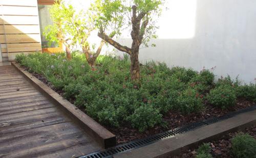 Dise o de patios y terrazas jardiner a l espigol for Jardineria sabadell