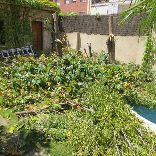 Projectes jardineria jardineria l espigol a barcelona for Jardineria sabadell