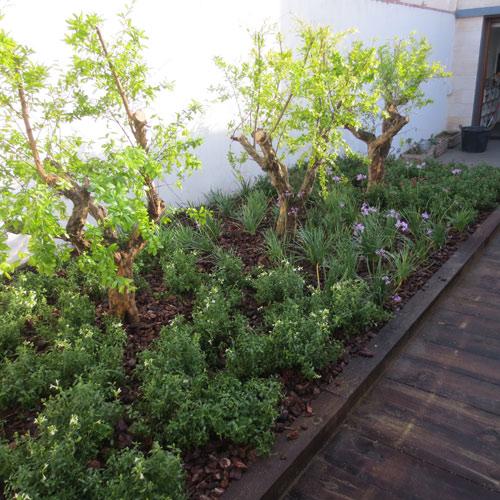 Escaleras con madera jardiner a l espigol en barcelona for Jardineria barcelona