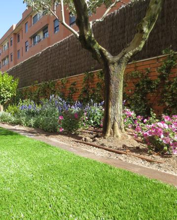 Decoracin de jardines plantacin de rboles arbustos y flores